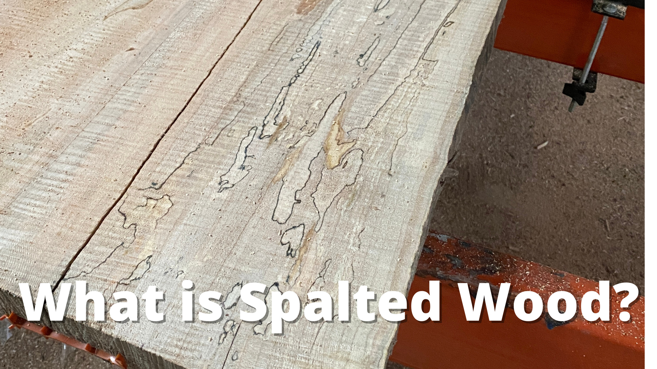 what is spalted wood